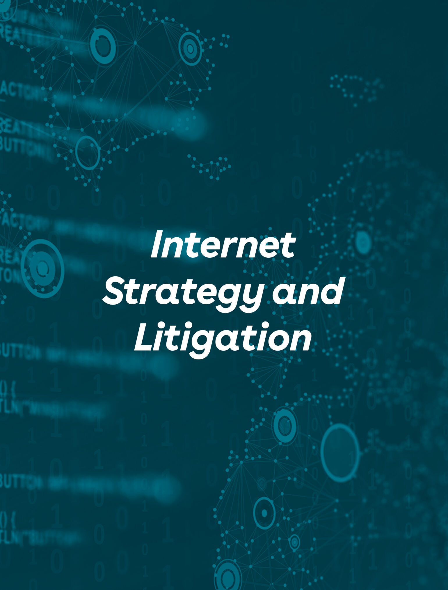 Internet Strategy Litigation